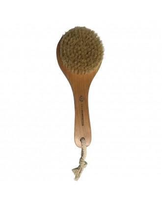 Bath Brush